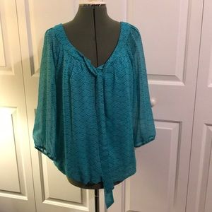 Dressbarn ladies sheer and lined blouse
